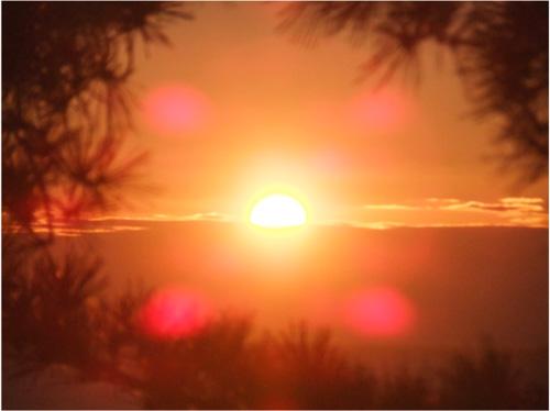 五浦海岸より望む水平線から昇る朝日。平成25年11月12日撮影